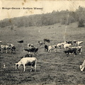 Ferme du Rouge-Gazon 1906